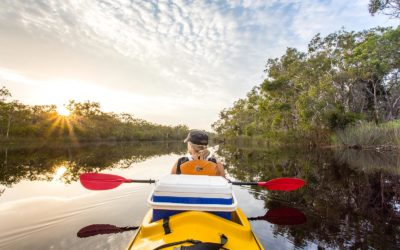 Reflections from an overnight kayak safari in the Noosa Everglades