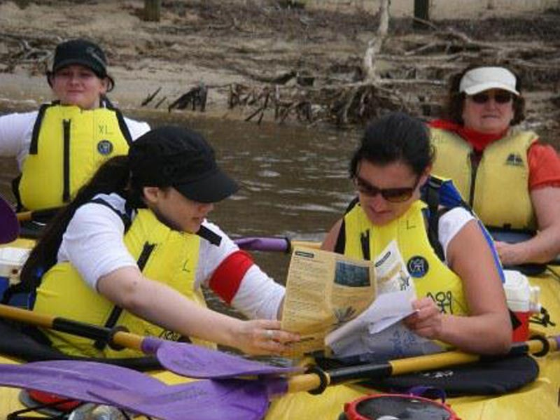 Team building programs on the Sunshine Coast