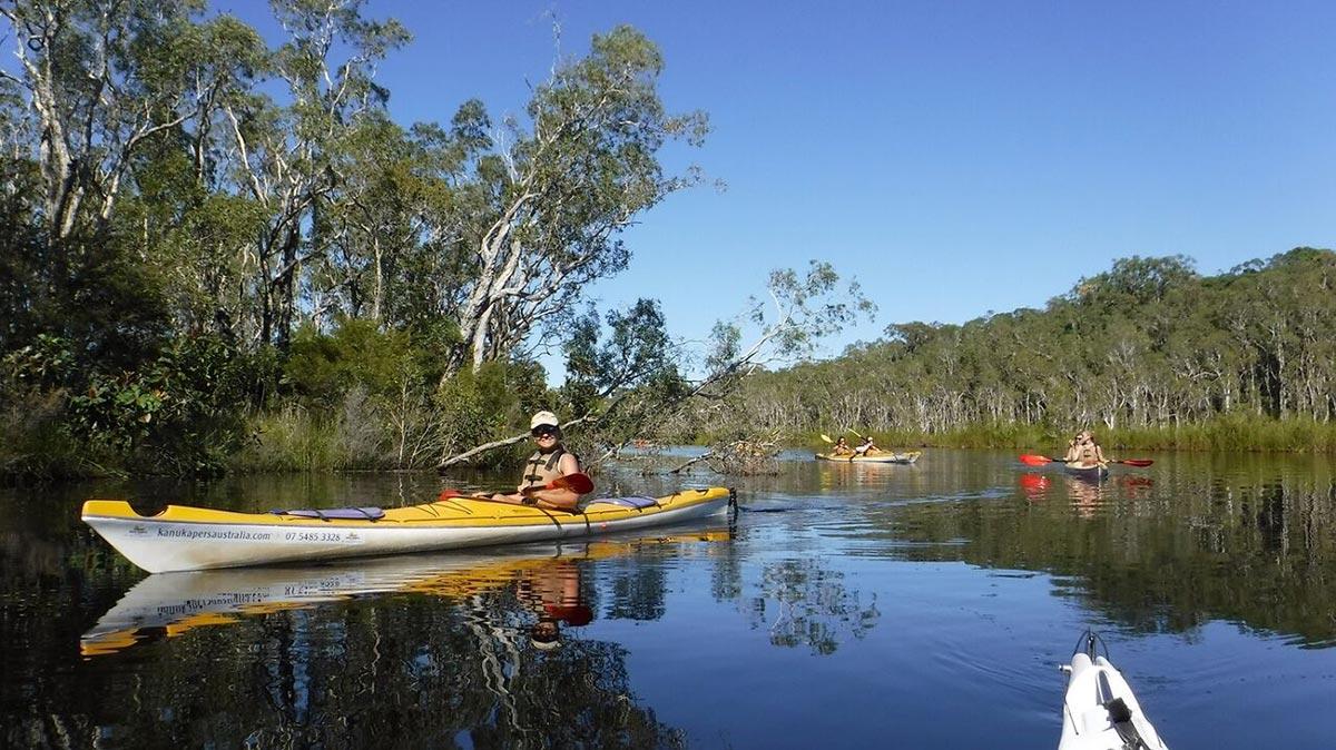 Noosa Everglades Kayak Tours