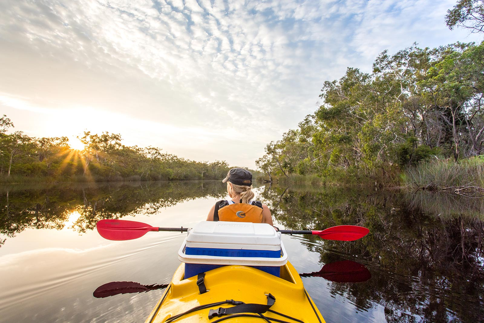 Kayak tours noosa