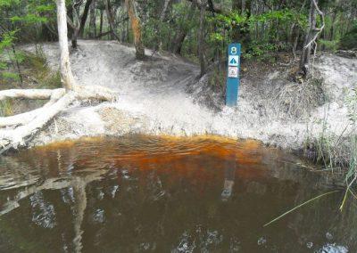 Noosa Everglades Camp 15